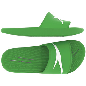 speedo Slides Men light green